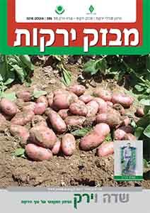 מבזק ירקות – חודש אוגוסט 2016