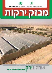 מבזק ירקות – חודש נובמבר 2017