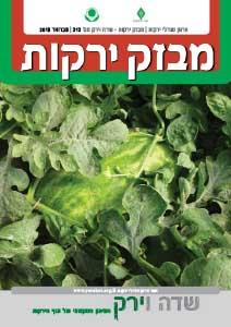 מבזק ירקות – חודש פברואר 2018
