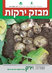 מבזק ירקות – חודש אוגוסט 2017
