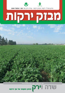 מבזק ירקות – חודש נובמבר 2018