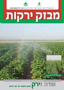 מבזק ירקות – חודשים יולי + אוגוסט 2019