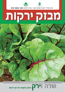 מבזק ירקות – חודש נובמבר 2016
